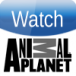 watch animal planet image 100 x 100
